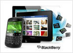 BlackBerry Web Application Development, BlackBerry Developers