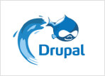 Drupal Website Development Company India, Drupal Web Development Services