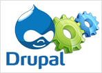 Drupal Customization Development, Drupal Custom Developers