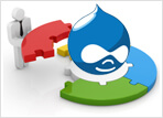 Drupal Plugin Development, Custom Plugin Development, Drupal Extension Development, Drupal Web Development
